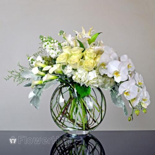 Crystal white - V102