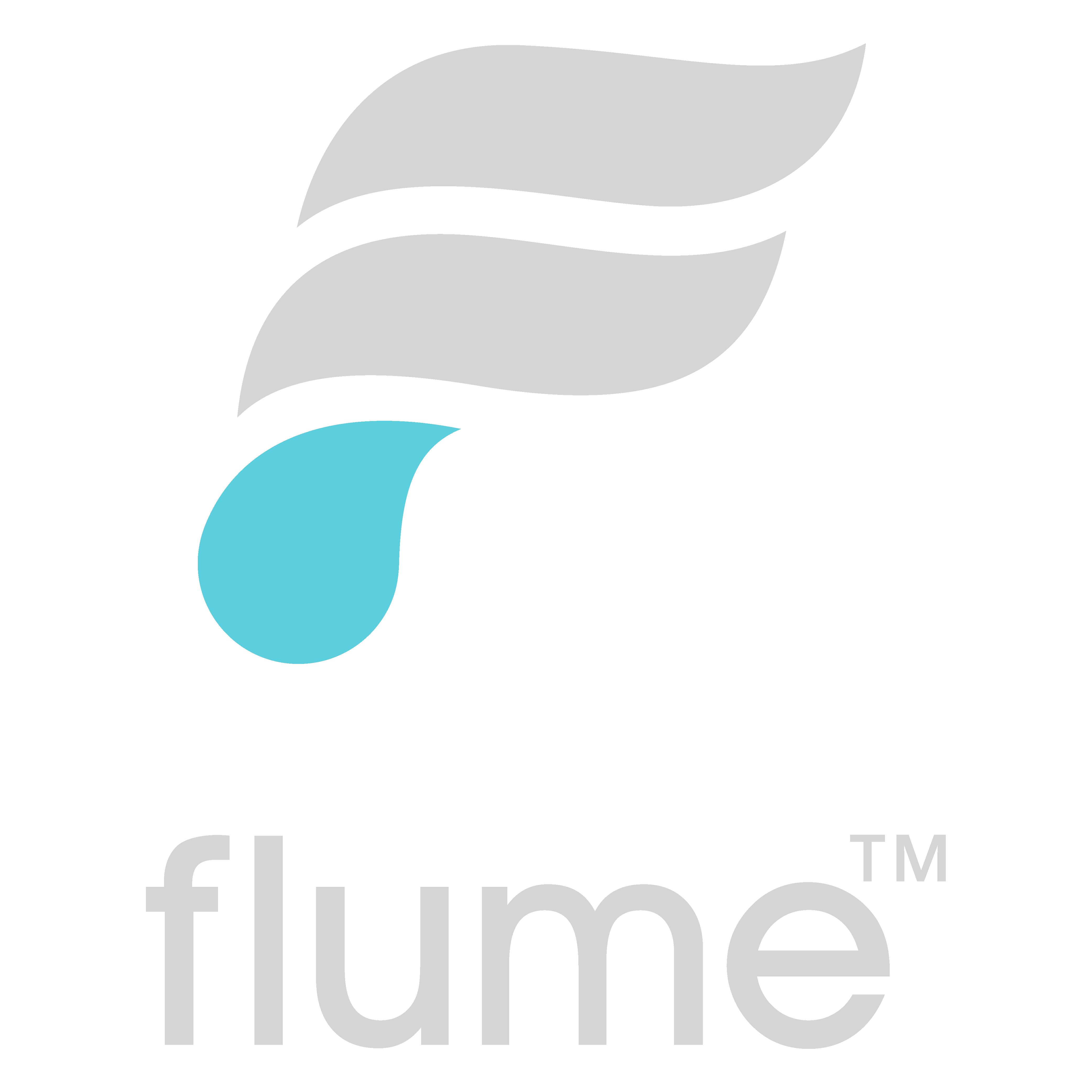flume basic logo