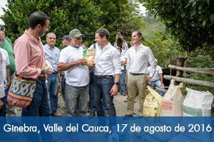Agricultores del Valle del Cauca, apoyados por Fondo Adaptación, reciben insumos para cultivos de plátano y mora