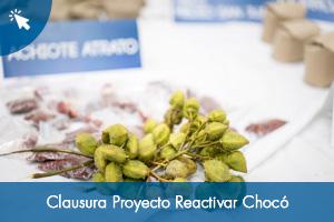 Clausura Proyecto Reactivar Chocó