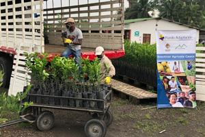 Fondo Adaptación continua entregando insumos agricolas para apoyar familias productoras en Cauca