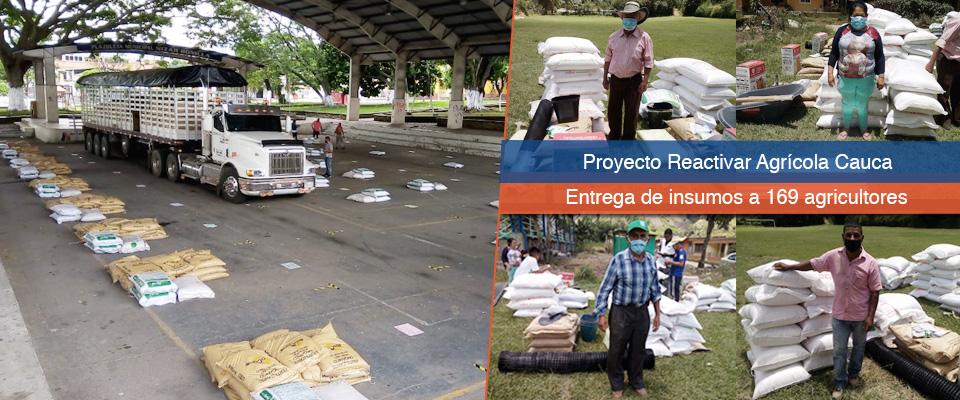 Ayudas para agricultores del Cauca por más de $5 mil millones, entrega el Fondo Adaptación