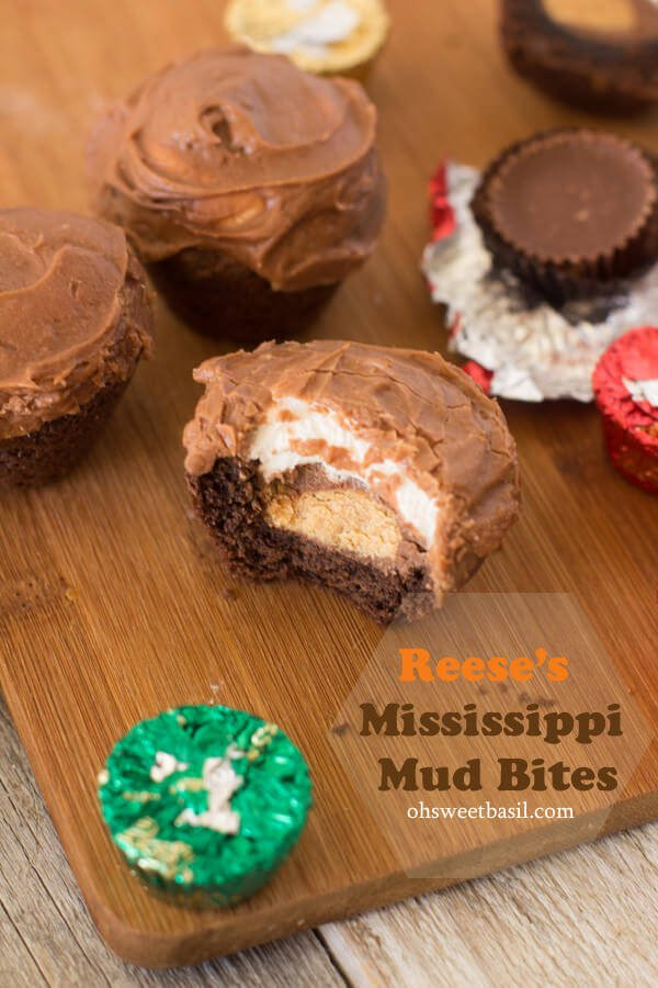 Image of Reese's Mississippi Mud Bites