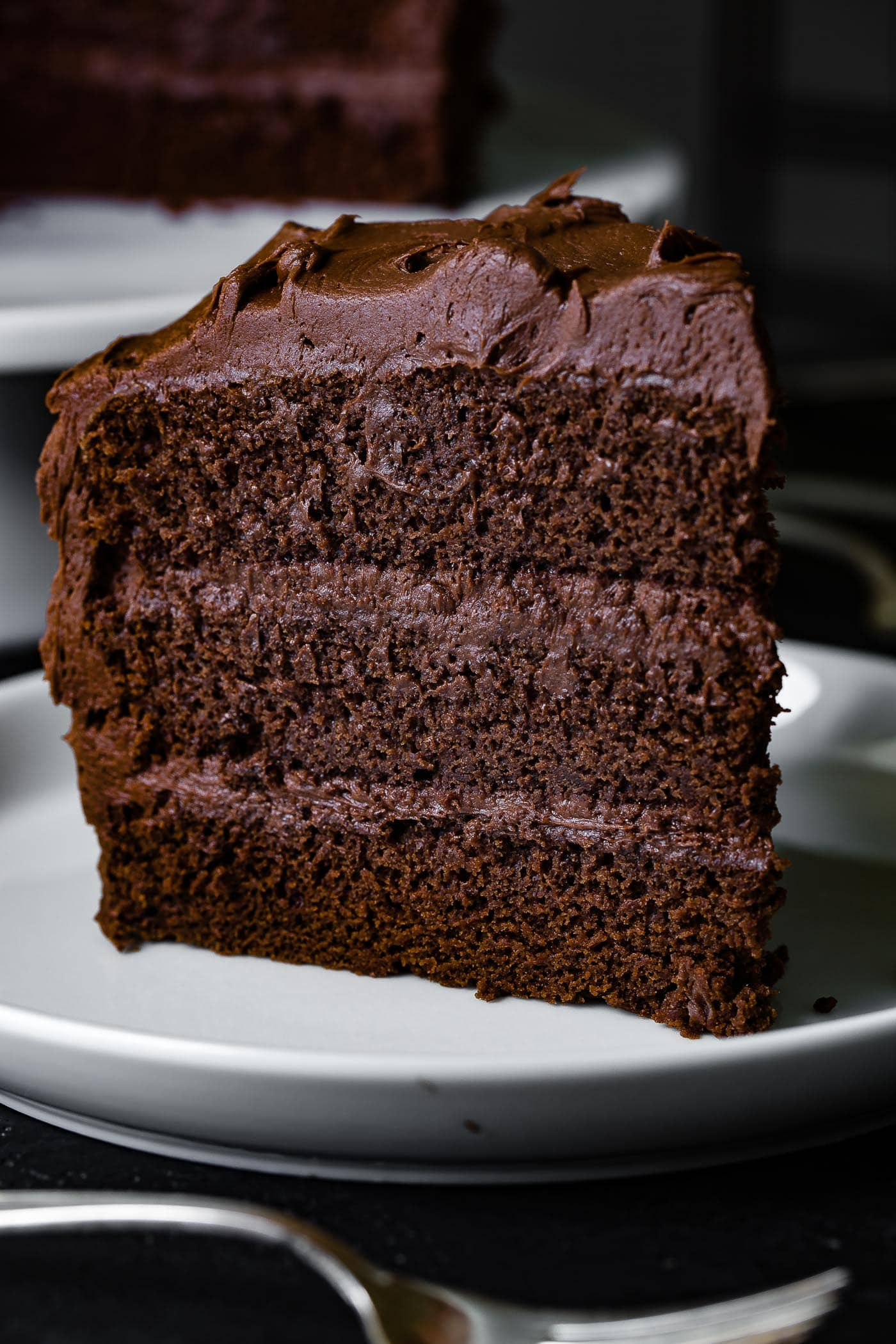 The Most Perfect Moist Chocolate Cake