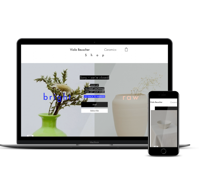 webshop entwicklung frankfurt violabeuscher ceramics