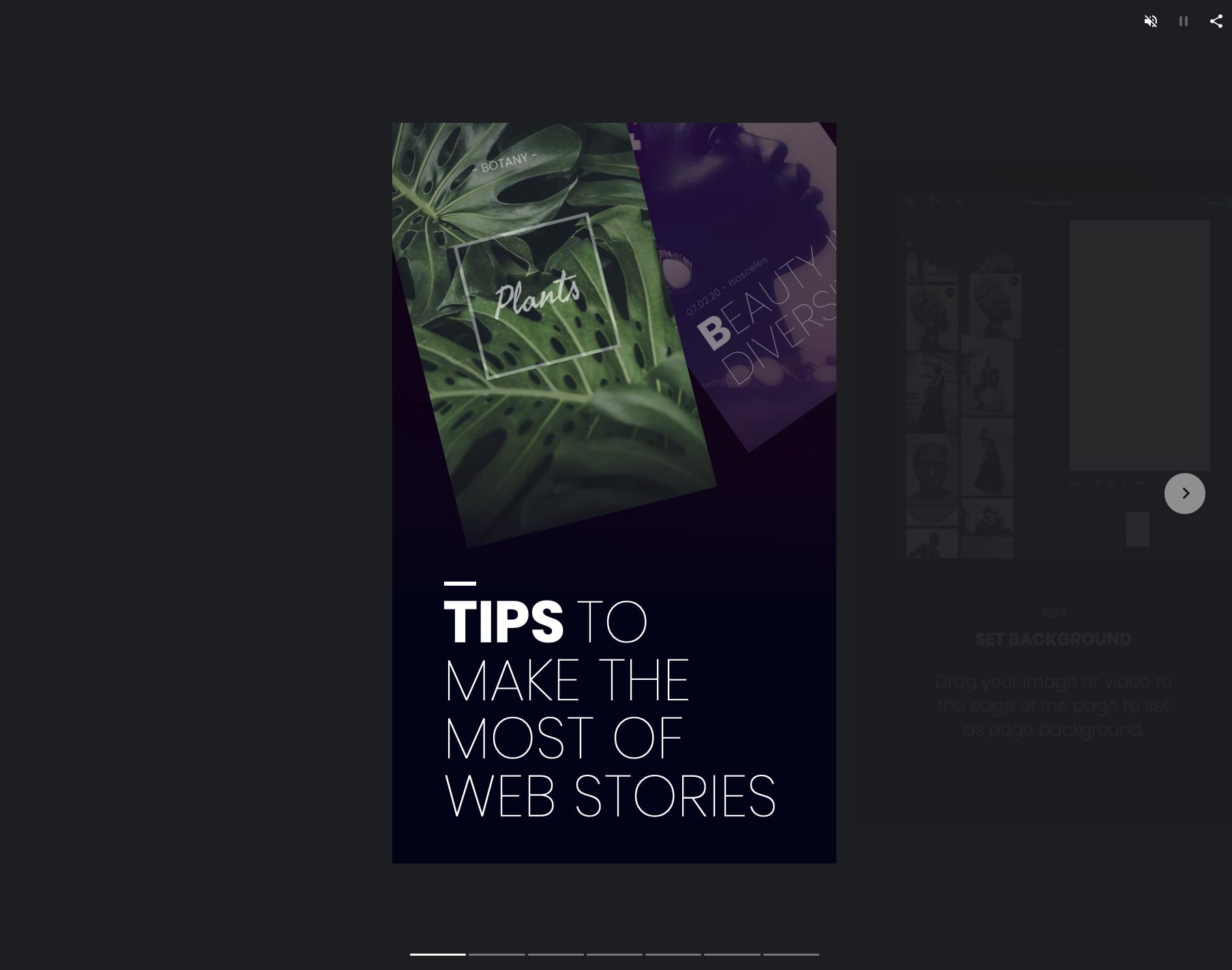 Google Web Stories (AMP): Wie Stories für mehr Traffic sorgen. 4