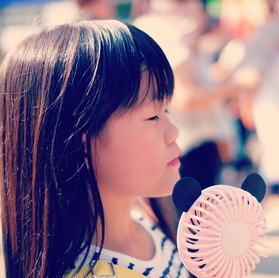 愛知県 祭り