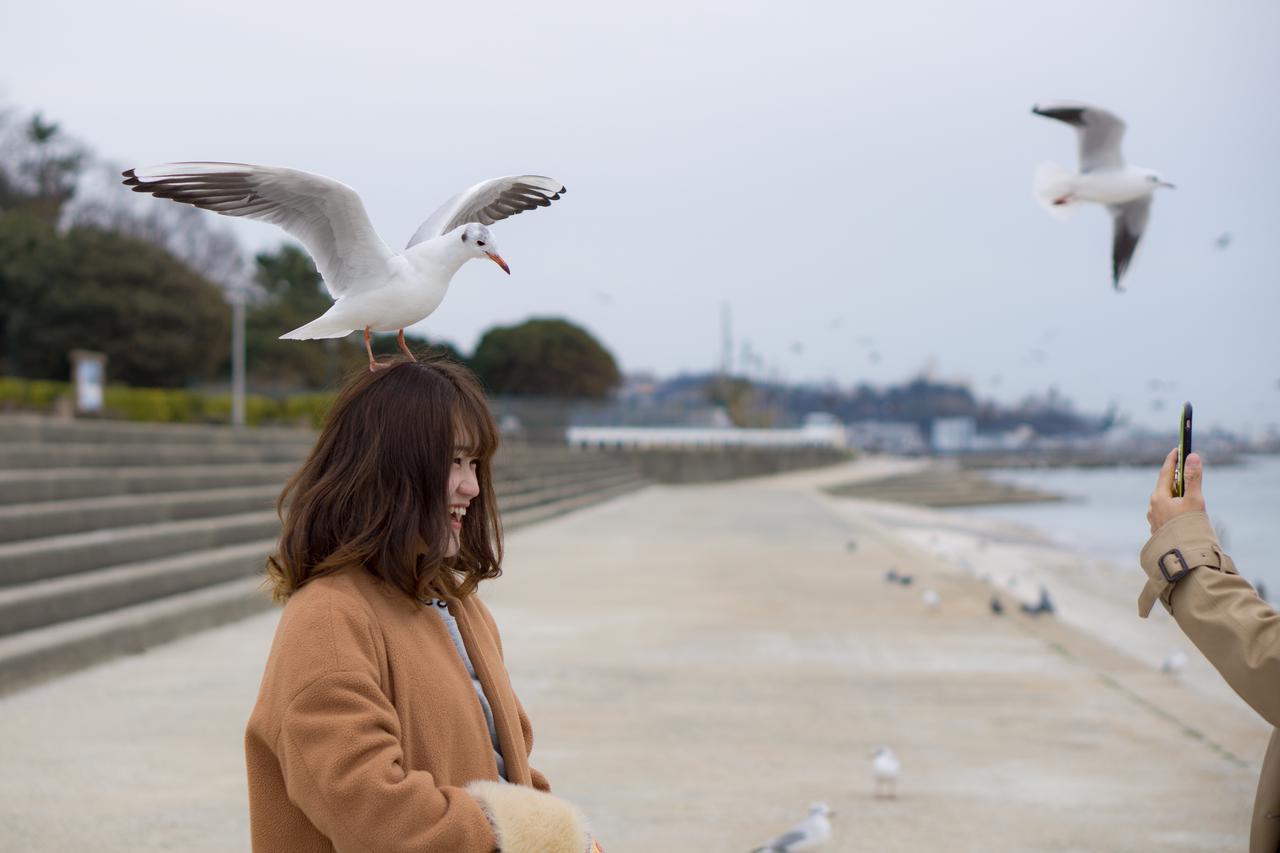 愛知県 竹島桟橋