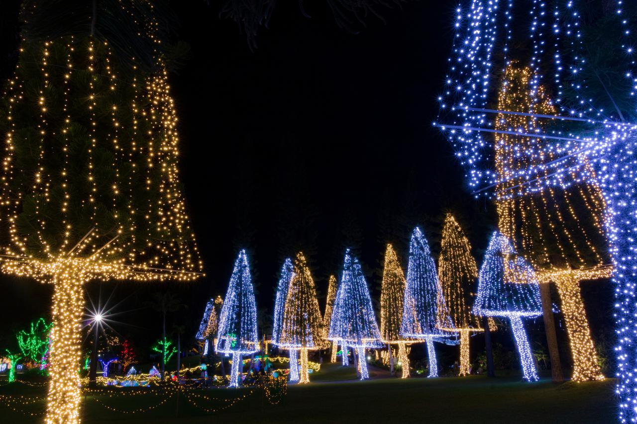沖縄県 東南植物楽園