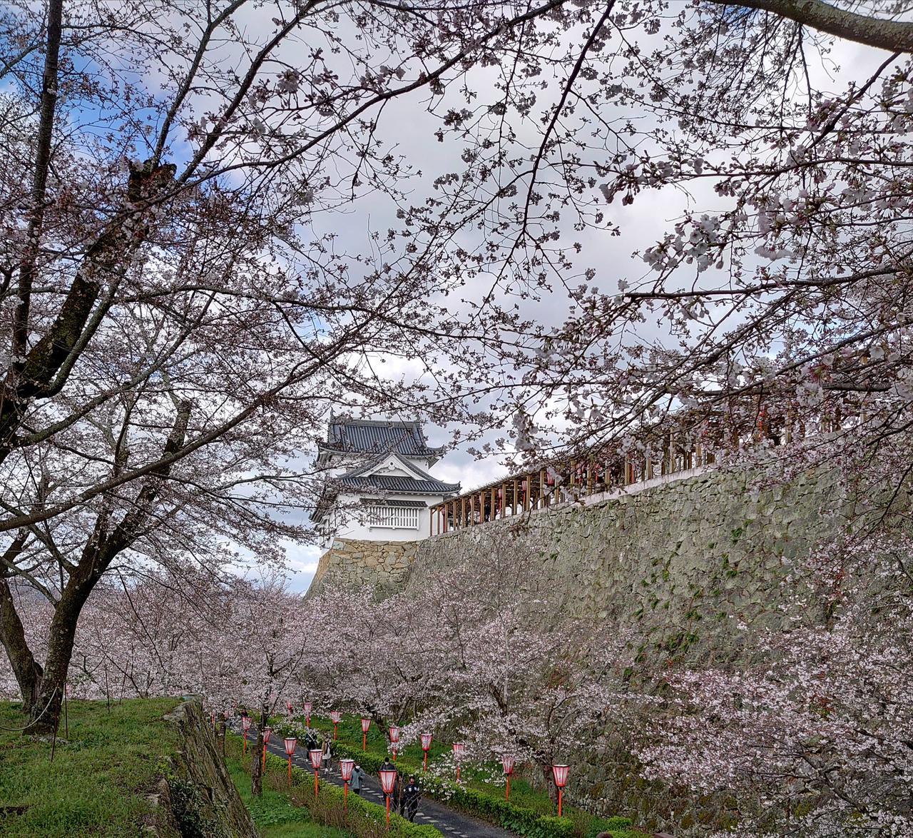 岡山県 鶴山公園