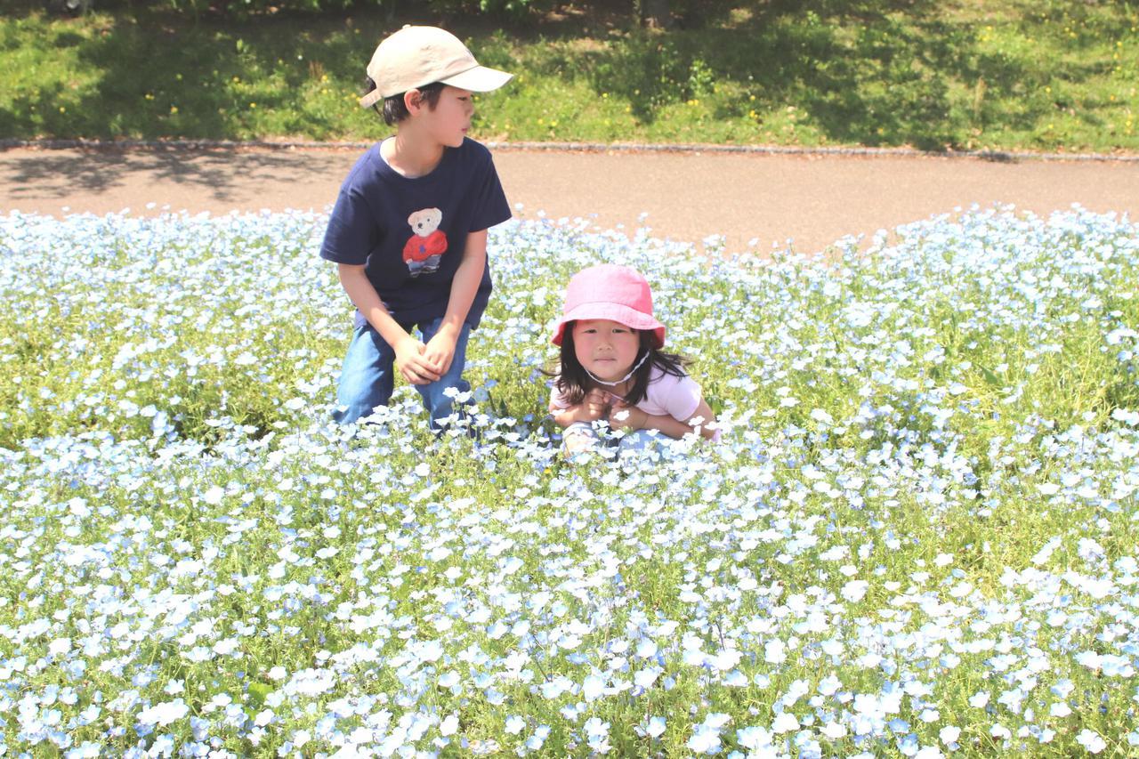 奈良県 馬見丘陵公園