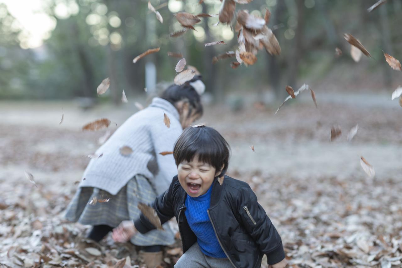 愛知県 公園