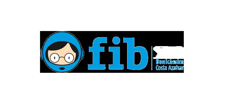 FIB. Validació d'entrades