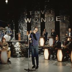 Stevie Wonder treedt op