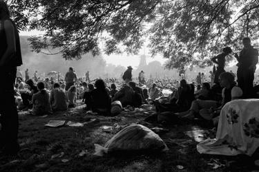 Holland Pop Festival in het Kralingse Bos
