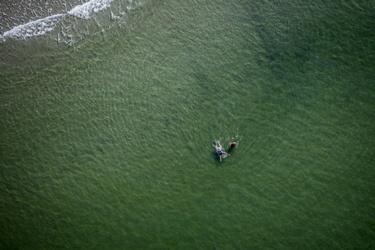 In de zee bij Ameland