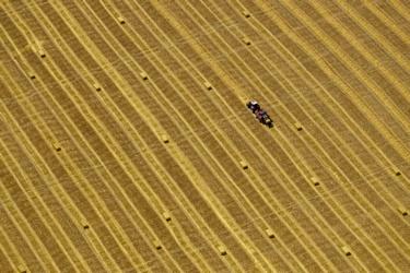 Een boer op zijn land