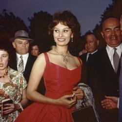 Sophia Loren op het filmfestival