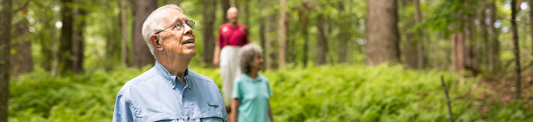 Three seniors are on a hike in a wooded area