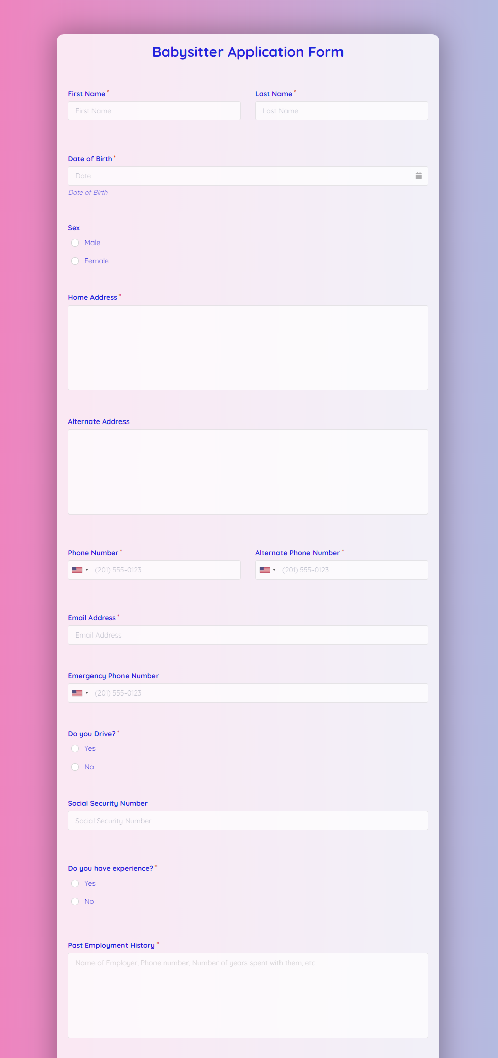 Babysitter Application Form Template template