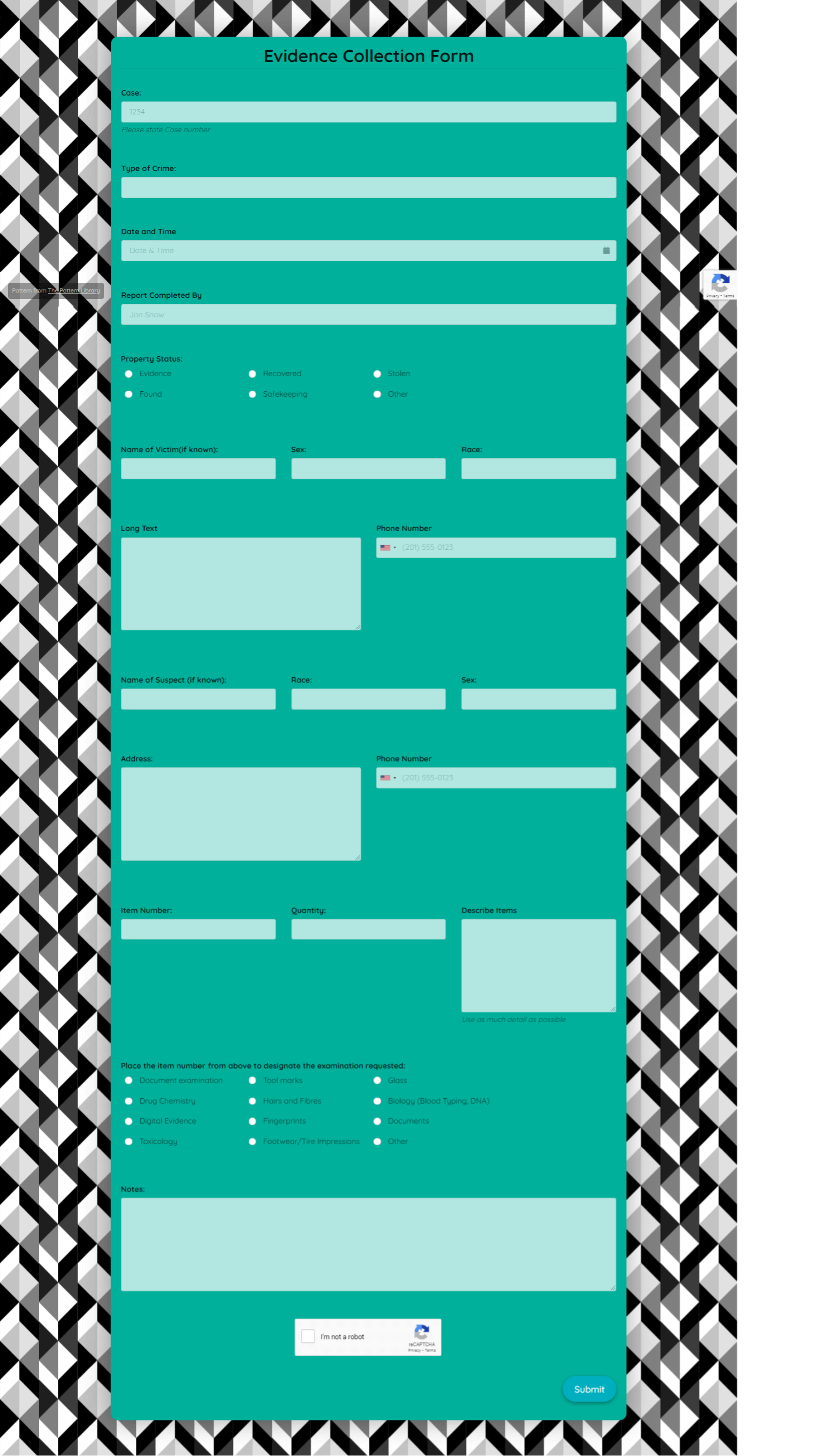 Evidence Collection Form Template template