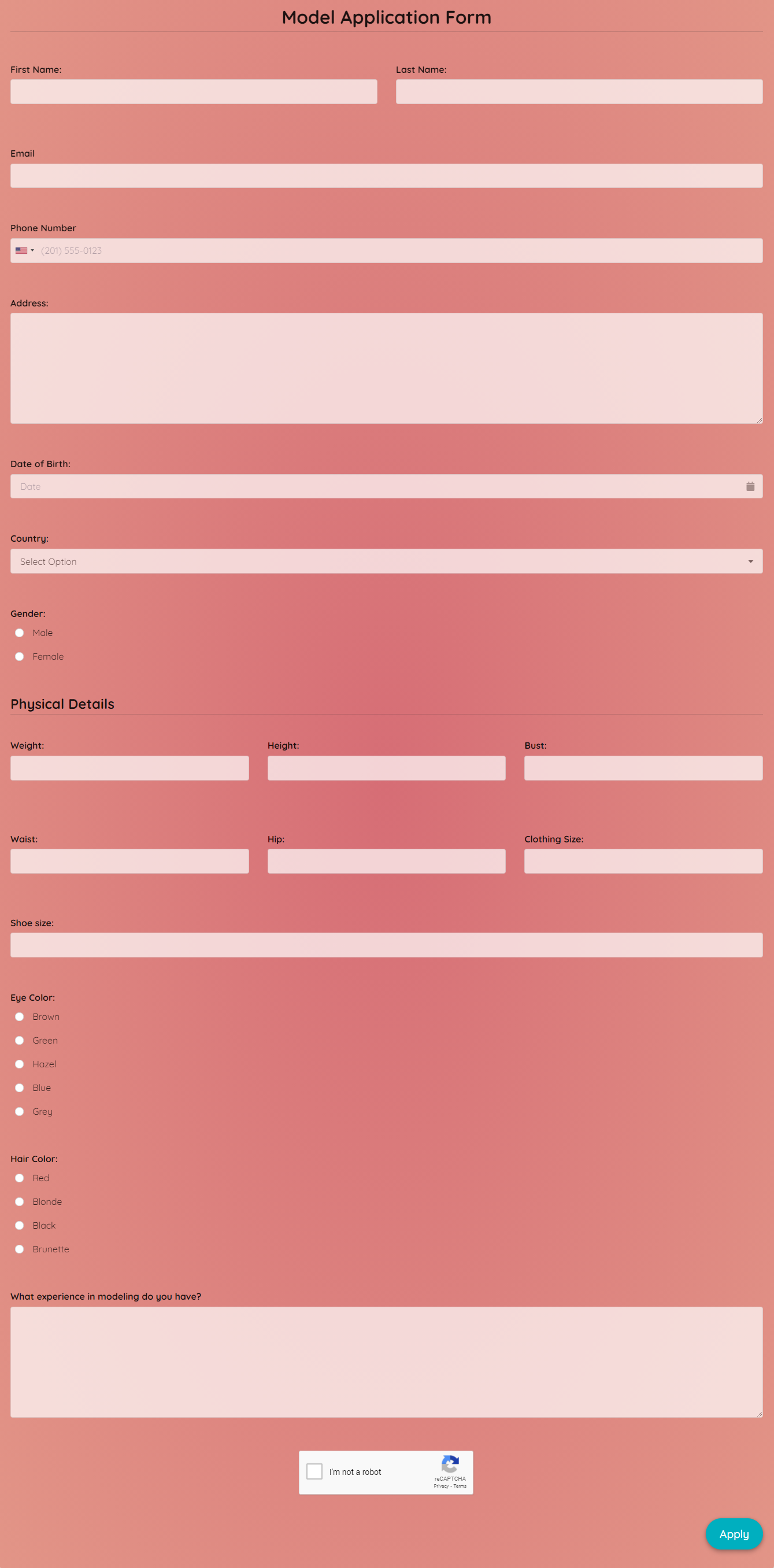 Model Application Form Template template