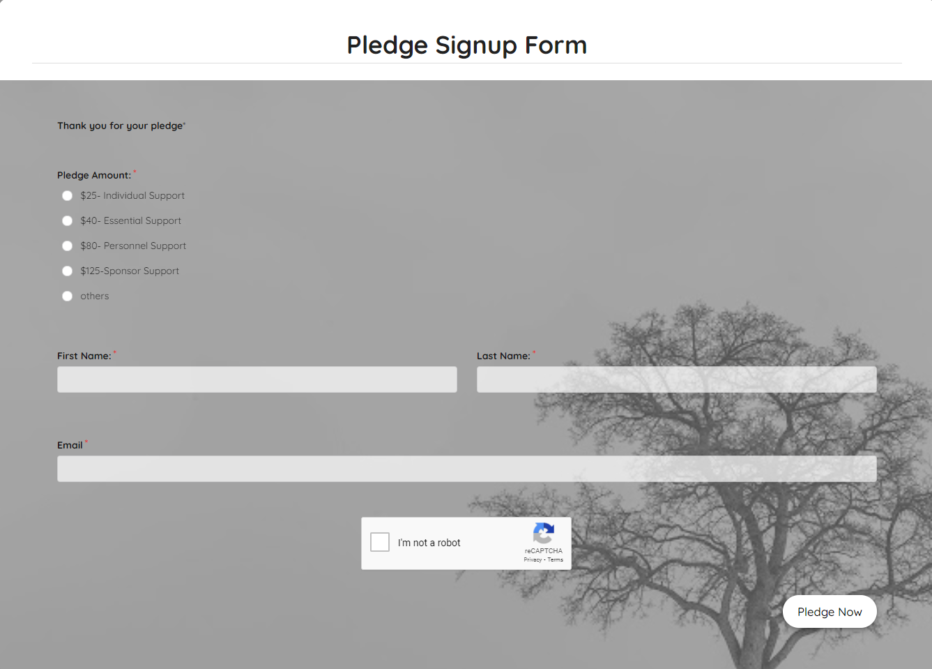 Pledge Signup Form Template template