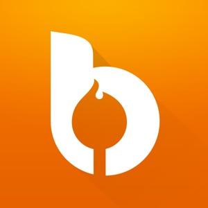Bonfyre icon