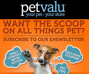 Join Pet Valu