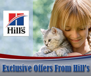 Exclusive Offers From Hill's