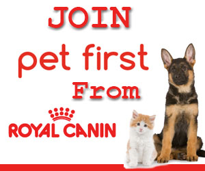 Join Pet First from Royal Canin