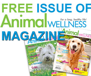 Get a Free Issue of Animal Wellness Magazine