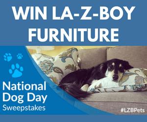 Win La-Z-Boy Furniture