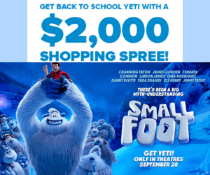 Win a $2,000 Shopping Spree from YTV