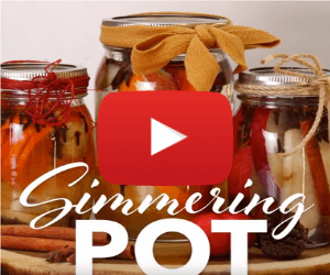 Fall Simmering Pot