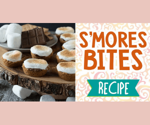 Delicious S'Mores Bites