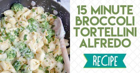 broccoli tortellini alfredo