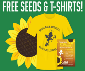 Free Seeds & T-Shirts from Cheerios