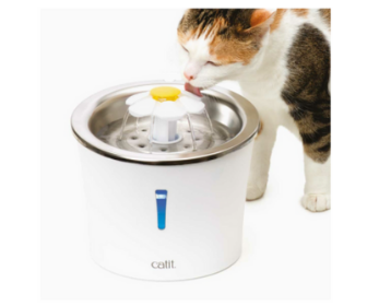 Try and Test Cat Products for Free from Catit