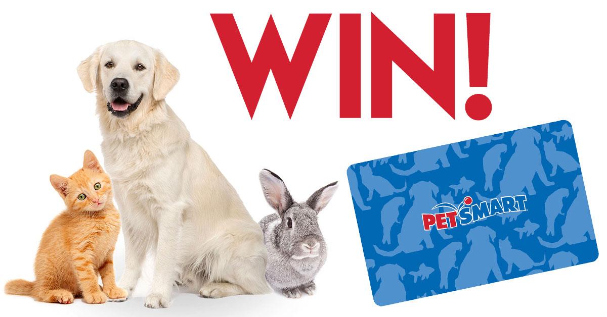 Win a Petsmart Gift Card!