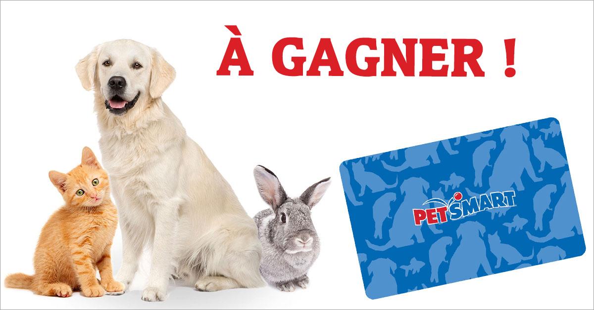 concours Gagnez une carte-cadeau Petsmart!