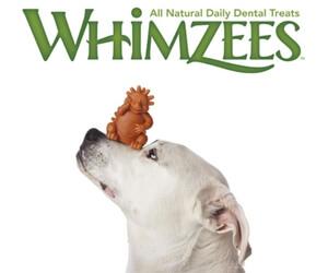 Free Dog Dental Chew