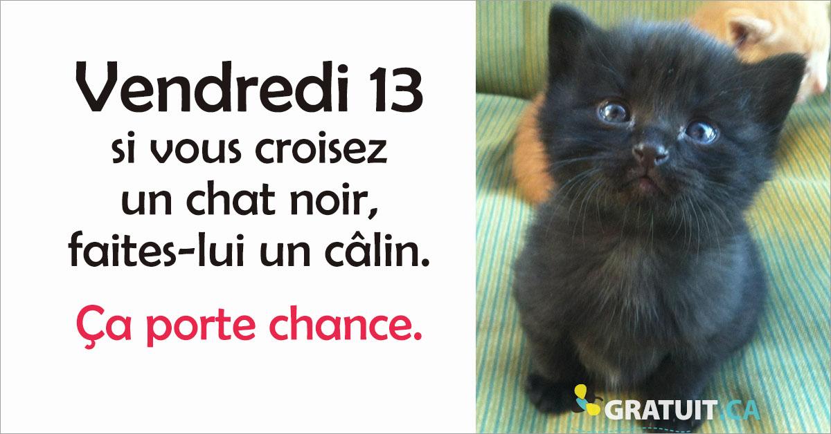 https://storage.googleapis.com/freebies-com/resources/news/23446/vendredi-13-donnez-des-c-lins-aux-chats-noirs-.jpg