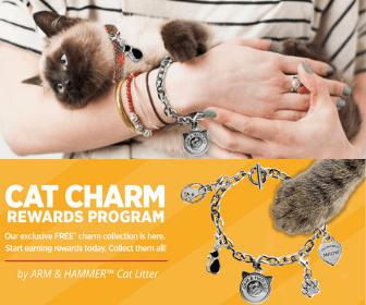 https://storage.googleapis.com/freebies-com/resources/news/25084/free-cat-charm-bracelet.png