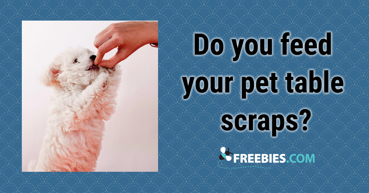 POLL: Do you feed your pet table scraps?