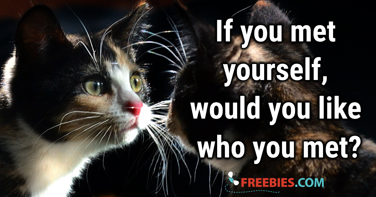 POLL: If you met yourself...