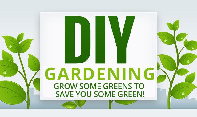 https://storage.googleapis.com/freebies-com/resources/posts/1/diy-garden.jpg