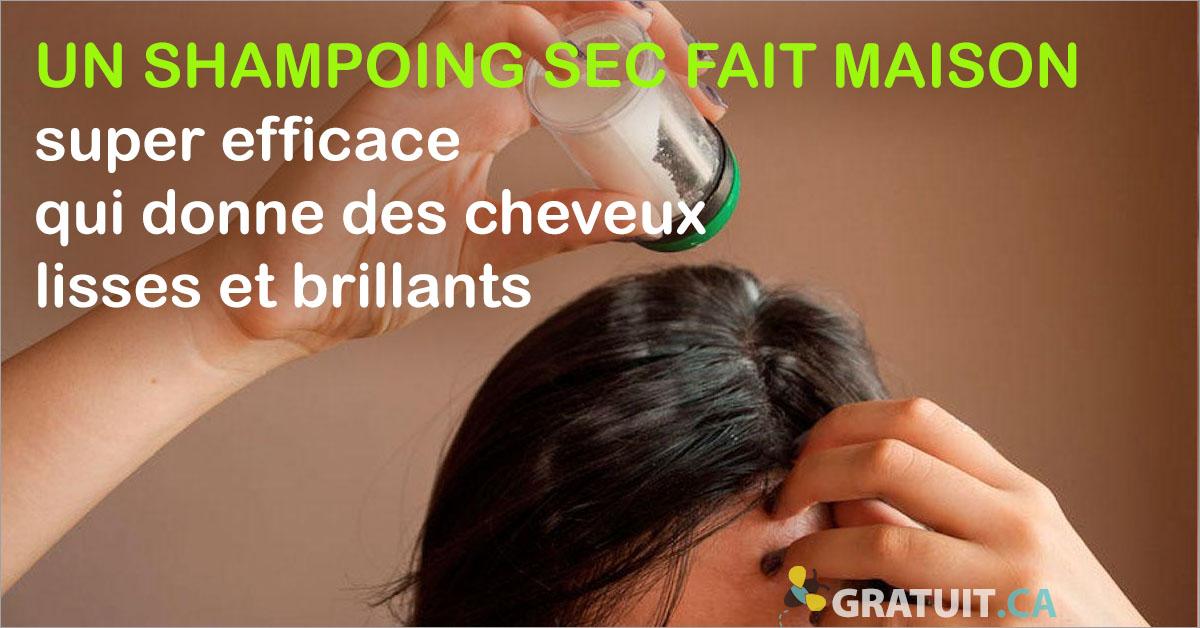 Un Shampoing Sec Fait Maison Super Efficace Pour Des Cheveux Lisses Et Brillants