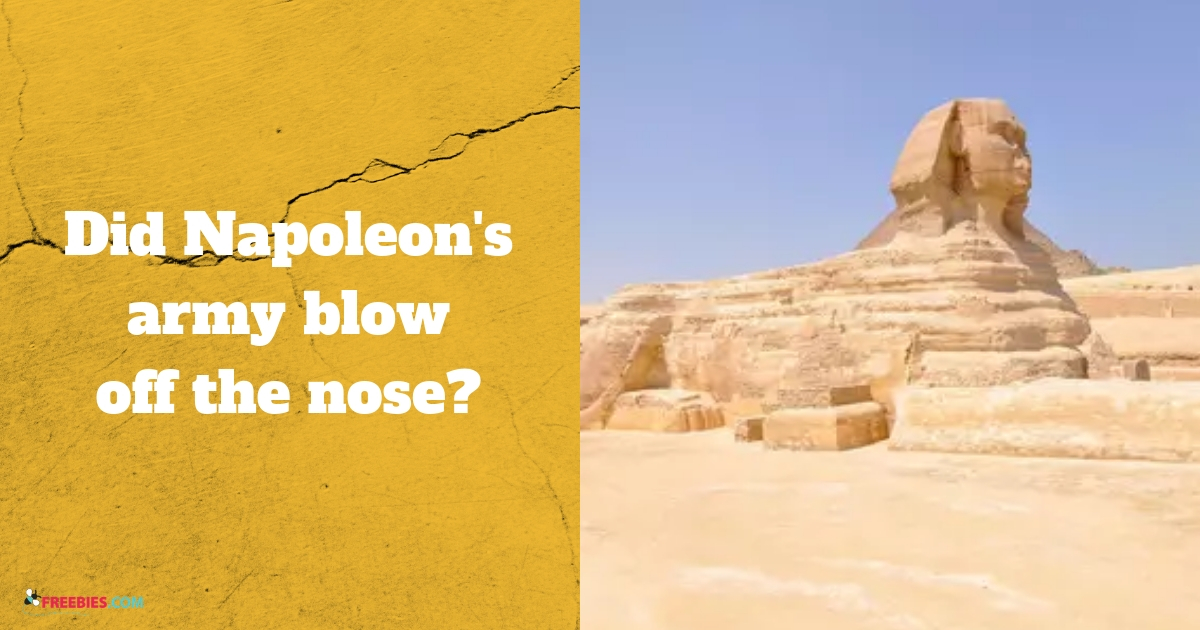 giza nose