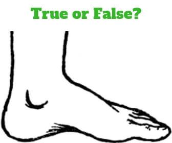 foot trivia